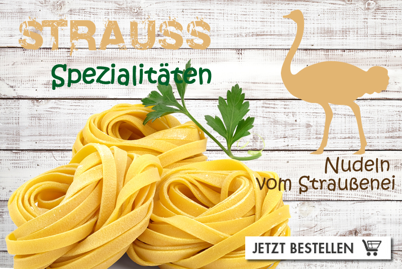 straussns - Homepage